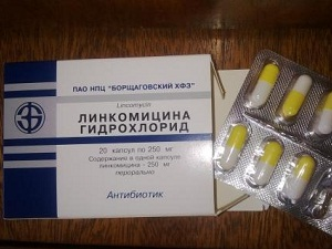 линкомицин гидрохлорид инструкция по применению